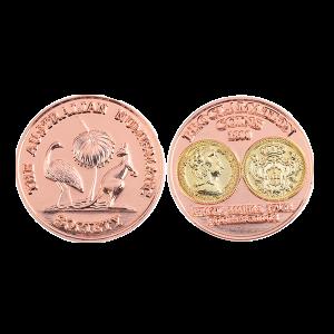 Matt Copper Coins