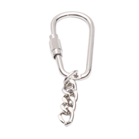 Carabiner with Chain