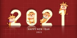 happy lunar year